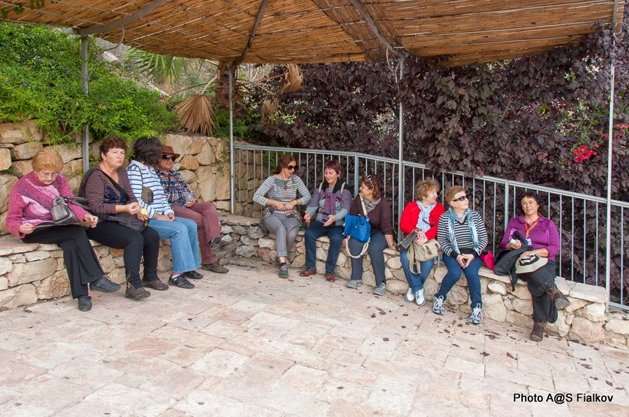 В городе Давида. Экскурсия в Иерусалиме Светланы Фиалковой.