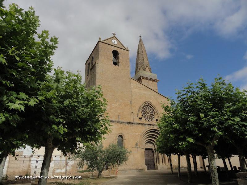 espanha - Passeando pelo norte de Espanha - A Crónica - Página 3 DSC05312