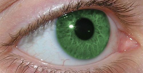 Mengganti warna mata dengan Photoshop