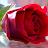a.d.f Fawal avatar image