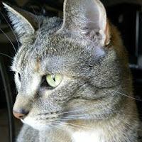 Aux PD's avatar