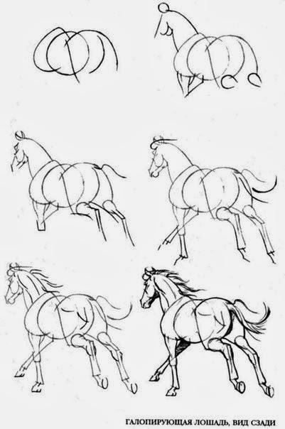 нарисовать бегущую лошадь.