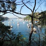 Boats on Mosmans Bay (258197)