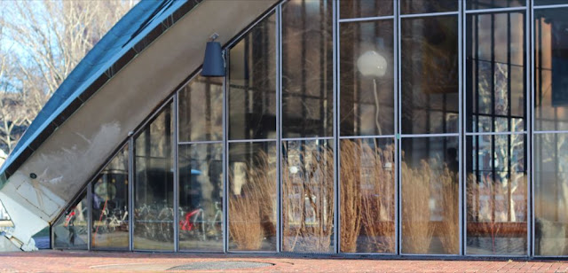 tall grasses reflected in the windows of Kresge Auditorium