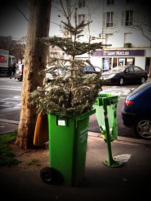 sapin planté dans une poubelle