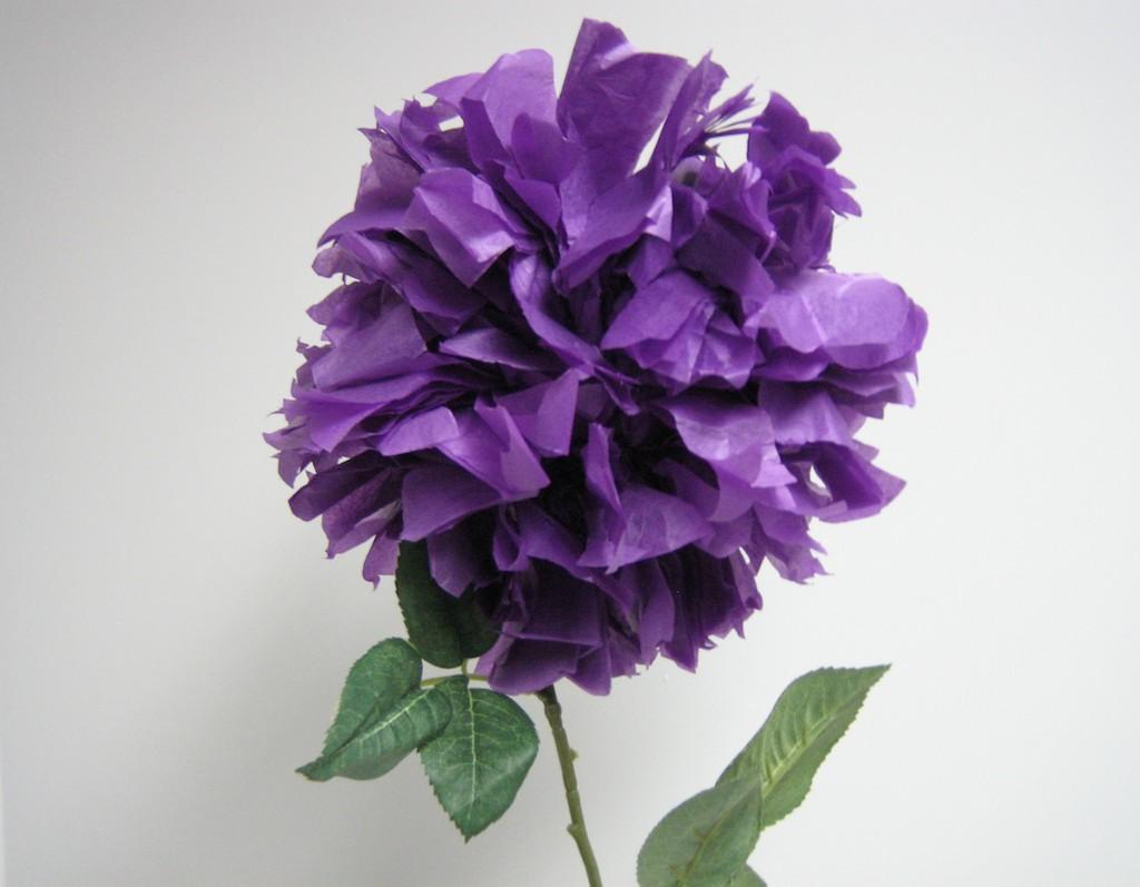 tissue_paper_flower.jpg