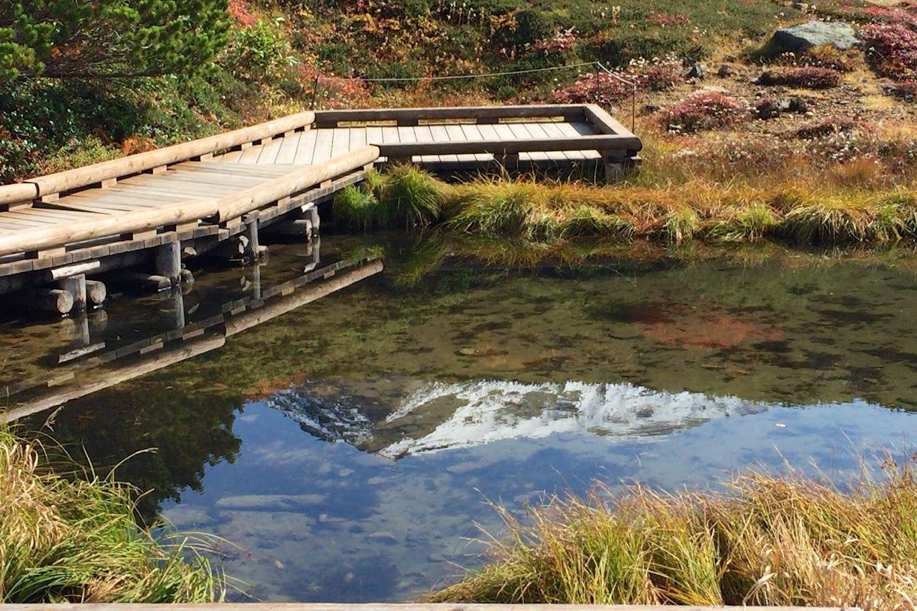 姿見駅舎近くの池から見る旭岳