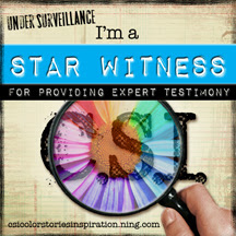 CSI Star Witness Badge