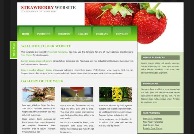 Cherry Berry CSS Website Theme Template