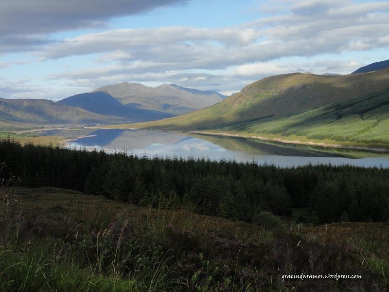 - Passeando até à Escócia! - Página 15 DSC04002