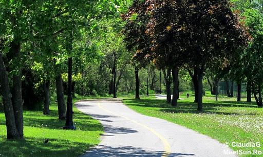 Alergare prin Montreal - pe malul fluviului