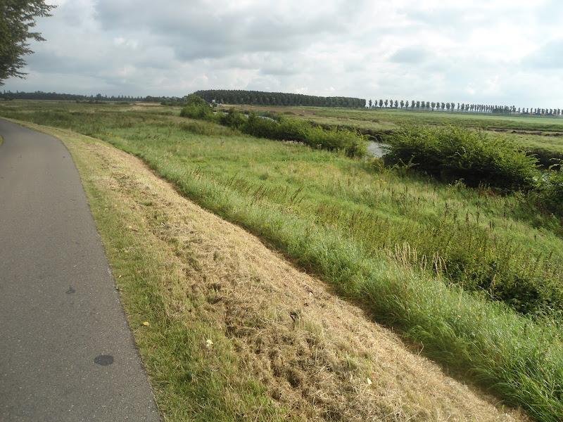 Omloop Goeree-Overflakee (NL) 110/80km: 30-31 août 2013 DSC03175