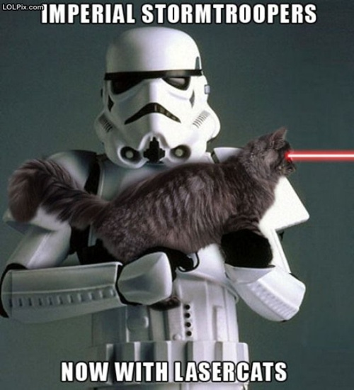 photo of a storm trooper holding a laser cat