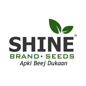 Shine Brand Seeds review