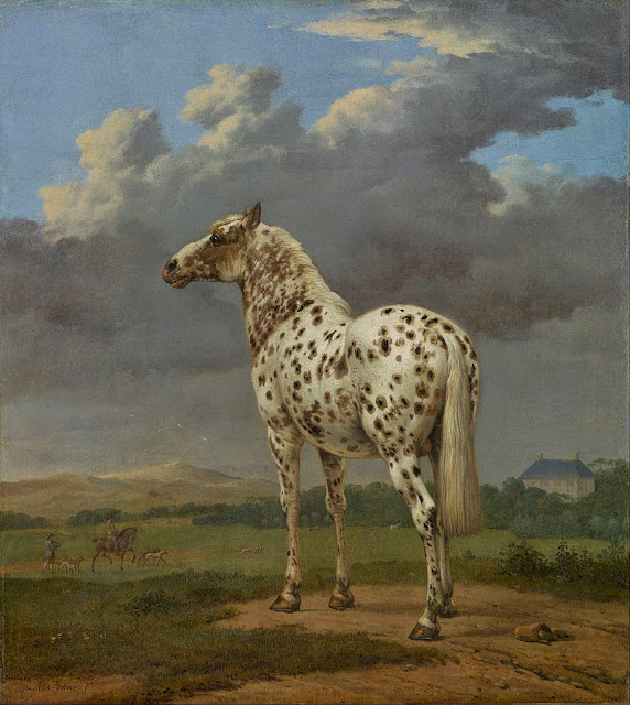Paulus Potter - The 'Piebald' Horse - Google Art Project