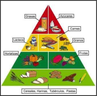 Alimentos prohibidos para reducir grasa abdominal manos deben estar