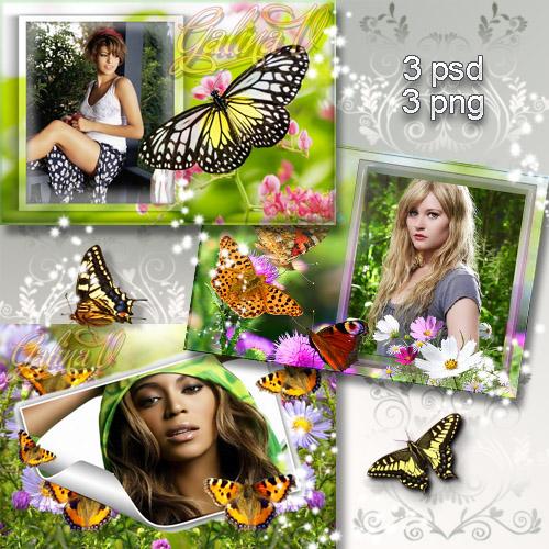 Летние рамки - Порхание бабочек