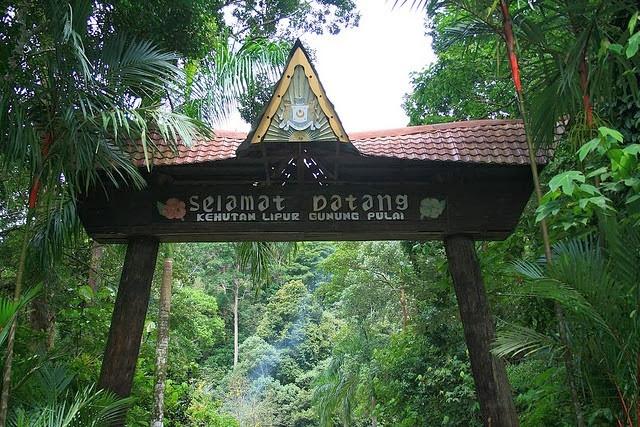 Gunung-Pulai-Mount-Pulai