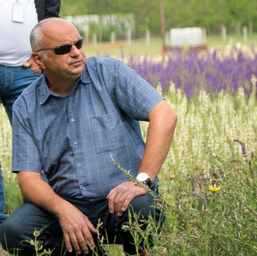 György Falu