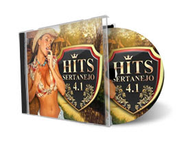 Hits Sertanejo 4.1