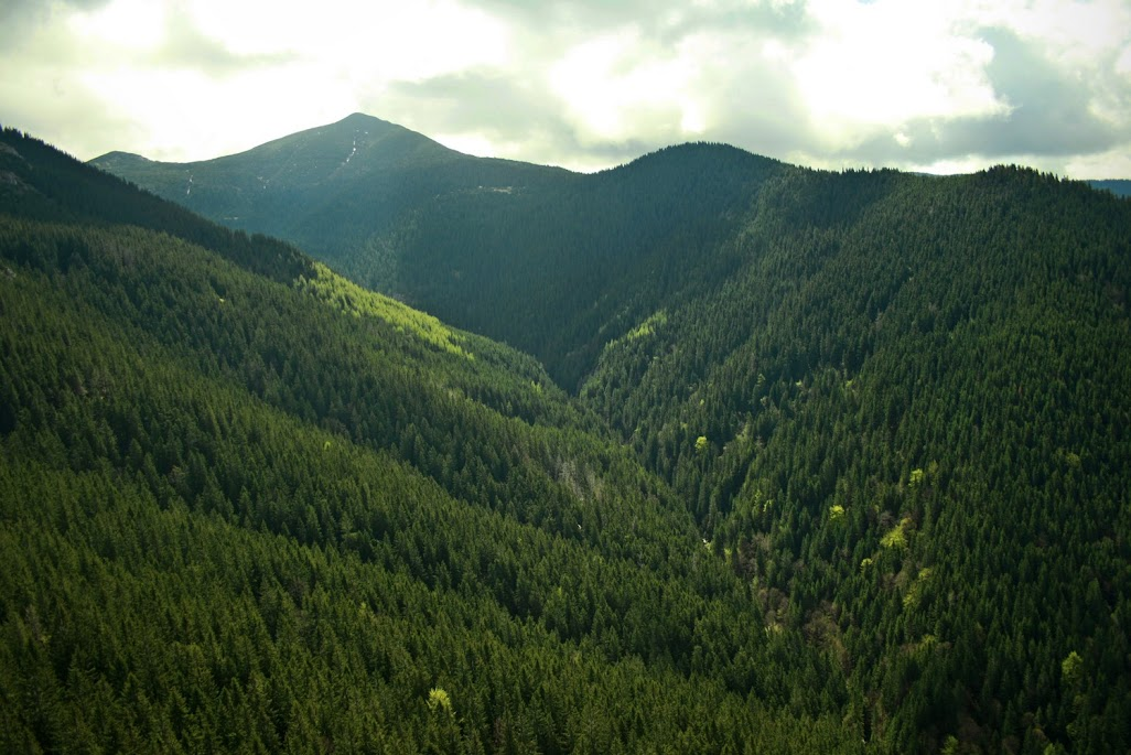 Sucha Dolina Sielnicka i Ostra