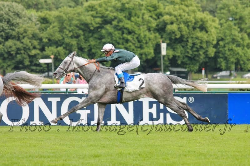 Photos Longchamp 25-05-2014 IMG_1443