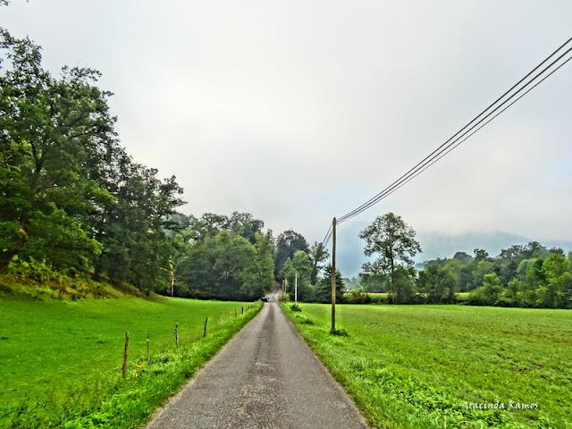 passeando - Passeando pela Suíça - 2012 - Página 27 DSC03464