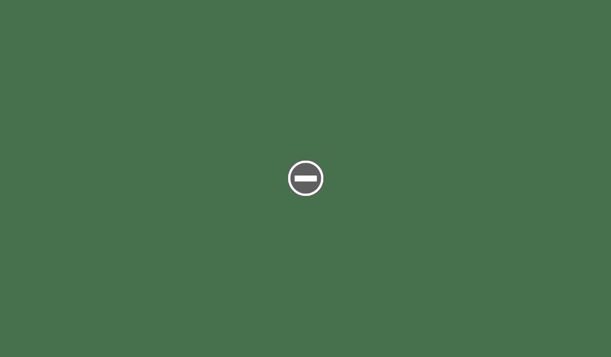 Fasan flexible slant IMG_1827%2B%28Custom%29