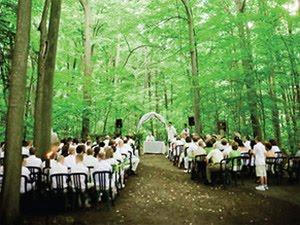 Serendipity Design Studio Wedding Woodland Theme Inspiration