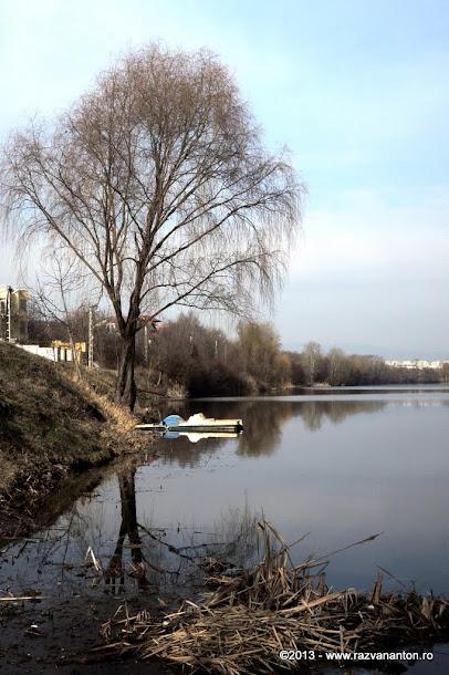 Barca pe lac