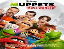 فيلم Muppets Most Wanted بجودة BluRay