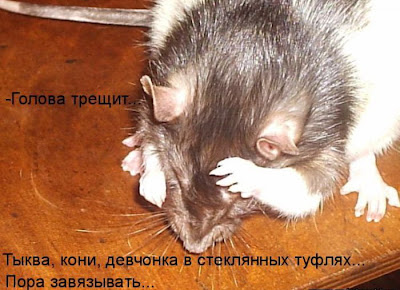 Астафьев милаха и кот громило аудиокнигу