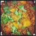 Carne Molida - Puerto Rican Ground Beef Recipe