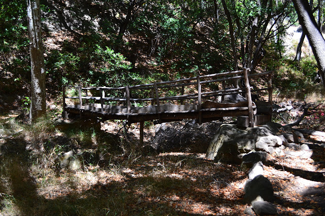 wooden bridge across the tributary