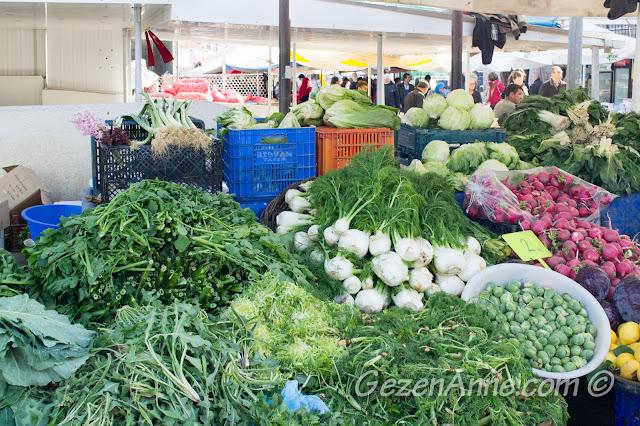 rezene ve Ege otları tezgahı, Alaçatı pazarı