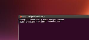 Terminale Ubuntu e le password con asterischi