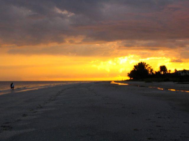 Florida%2520Startbild.jpg