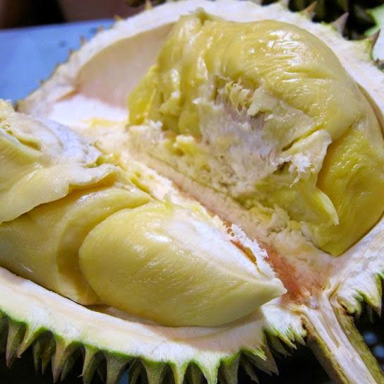 manfaat dan kandungan gizi pancake durian asli medan