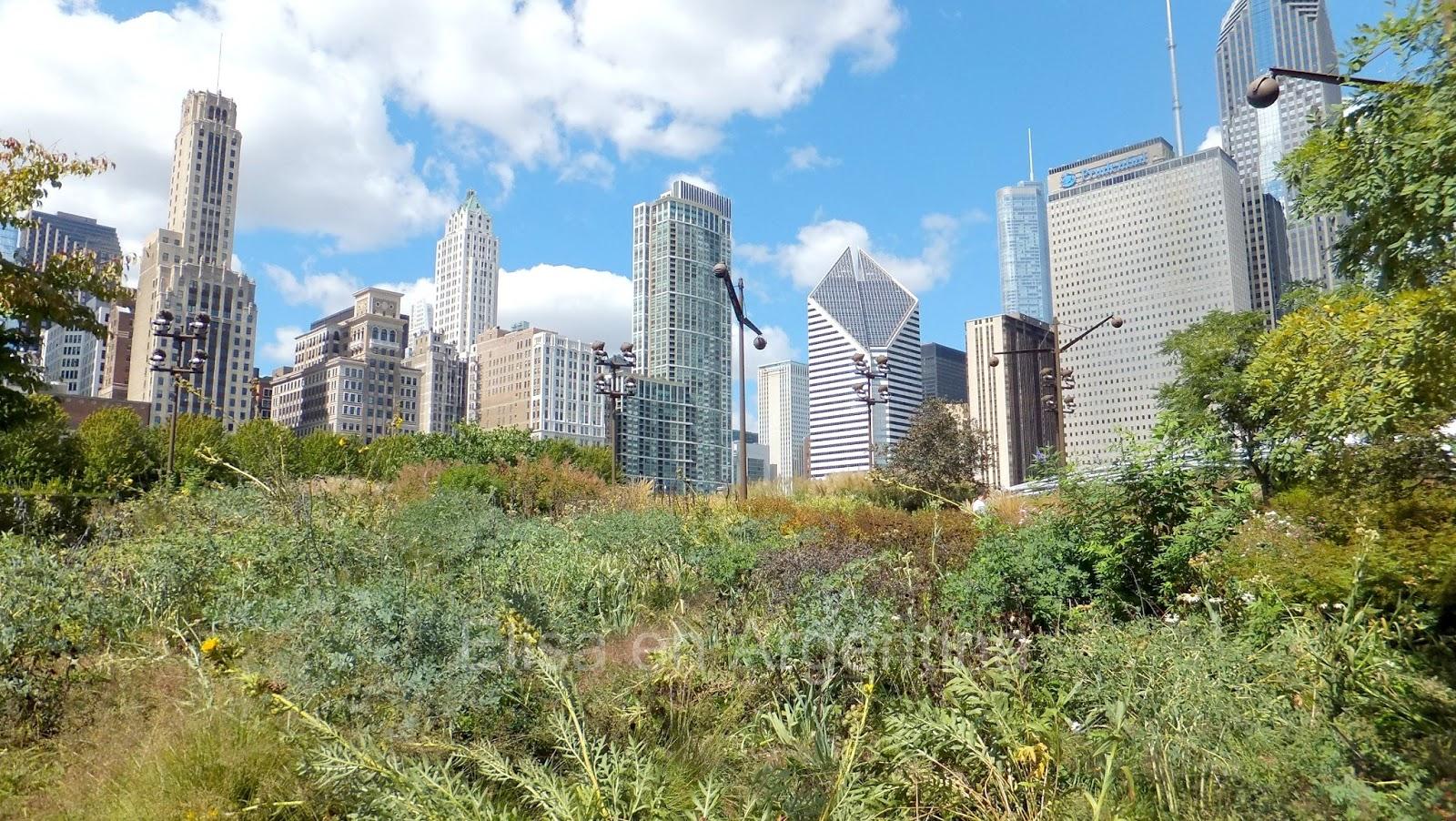 Chicago, Arquitectura, Elisa N, Blog de Viajes, Lifestyle, Travel