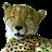 akihiko y avatar image