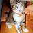 Kim Goodall avatar image