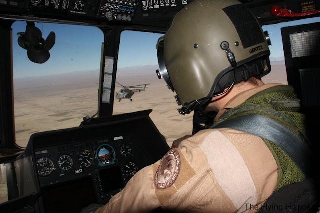 04_Mi-171_Flying_Hippos_03.jpg