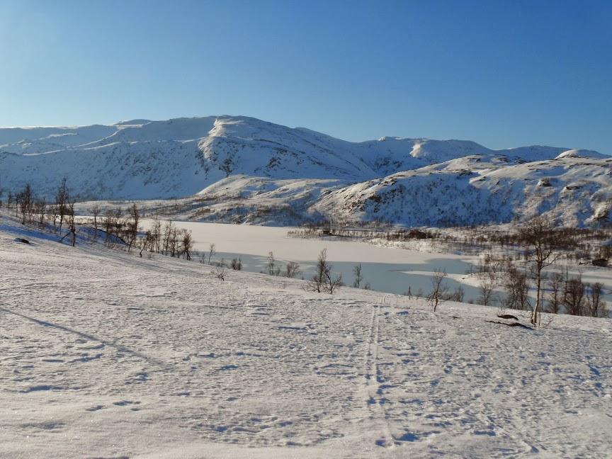 Norvège mars 2014 SAM_1306