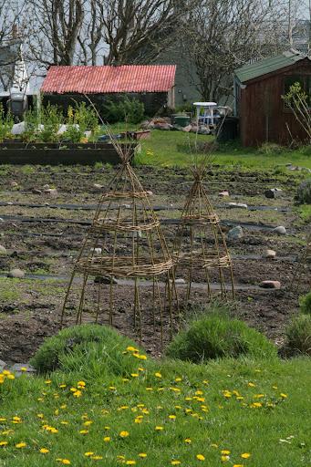 Sostegni sostegno e supporti per piccole piante rampicanti for Piccole cascate da giardino