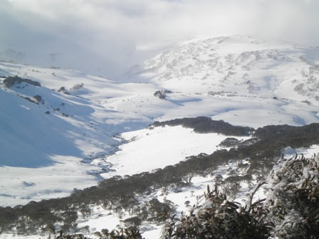 Snowy_River_july_2012_448.JPG
