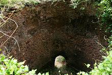 Un grupo de ciudadanos hace un recorrido arqueológico por las ruinas del trapiche.