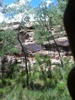canyon survival trip