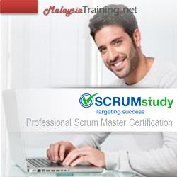 Scrum Master Certified Professional