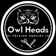 OwlHeads P
