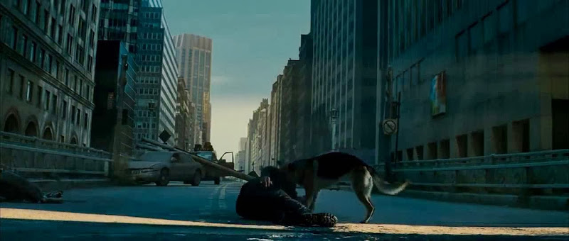 Free Download Single Resumable Direct Download Links For Hollywood Movie I Am Legend (2007) In Dual Audio